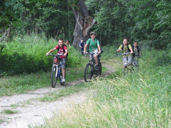 Szlaki rowerowe gminy Krośnice MAPA